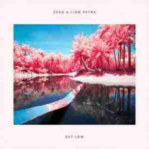 Instrumental: Zedd - Get Low X Liam Payne (Prod. By Zedd)